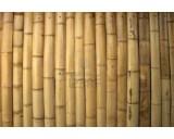 Bamboestokjes 100 stuks 25.5 cm lang